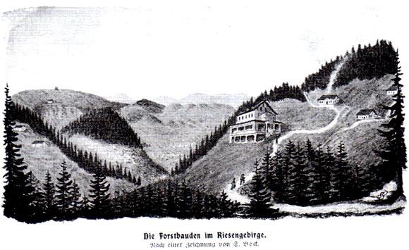 Budniki w Karkonoszach